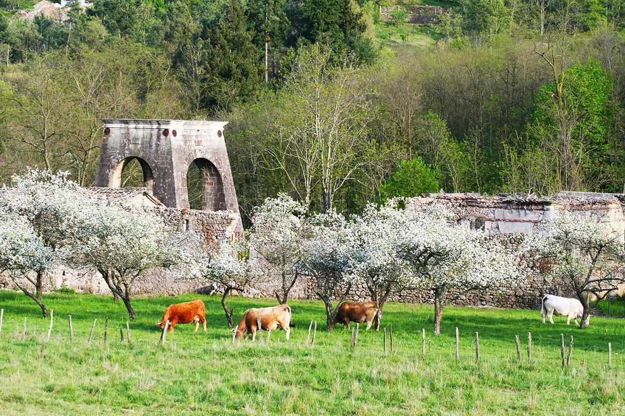 Les vestiges du puits Armand, quartier de Champgontier